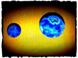 blueberry_1